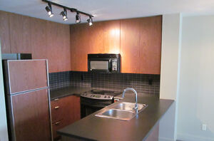 1 BDRM + Den 700 sq ft $2000.00 per month