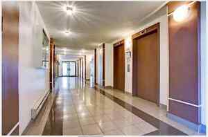 Perfect Large & Spacious APARTMENT at Perfect Location for Rent
