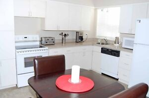 Super Clean & Affordable, Superbly Equipped Furnished Suite