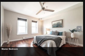 Roommate needed starting February 1- furnished room downtown