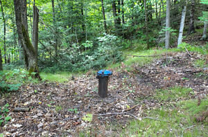 BEAUTIFUL LOT WITH DRILLED WELL ONSITE! Peterborough Peterborough Area image 2