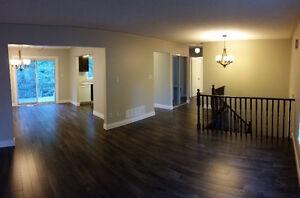 2 Apartments in one Beautiful Home, 3Bd +1Bd or 2+2 Wasaga Beach