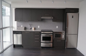 Brand new, bright, quiet, convenient 1 bedroom apartment, King W