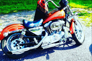 1999 Harley Davidson sportster 1200cc perfect condition