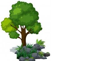 Abattage d'arbre, émondage, entretient paysagé