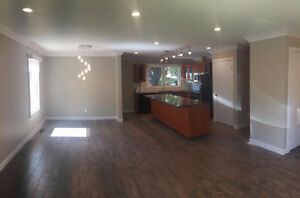 Newly renovated home in Patricia Heights Edmonton Edmonton Area image 2