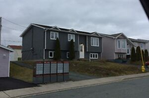 Newly Renovated One Bedroom Apartment in Airport Heights St. John's Newfoundland image 1