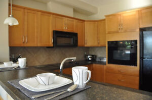 1 BEDROOM CONDO 5 MINUTE WALK FROM U OF C & 7 MINUTES TO LRT