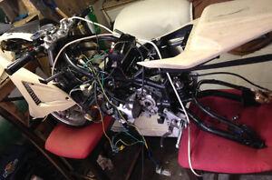 110cc Super Pocket bike Cambridge Kitchener Area image 1