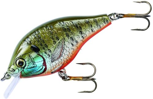 "Rebel F2502 Humpback Crankbait 1//4oz 1-3//4/"" Gld//Black"