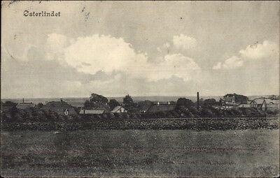 Osterlindet Oster Lindet Denmark c1910 Postcard