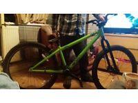 Green adult jump bike