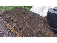 FREE Soil (Dug up from garden,