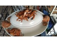 Large Seafood Tureen and Plate