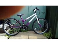 Girls MTB style bike