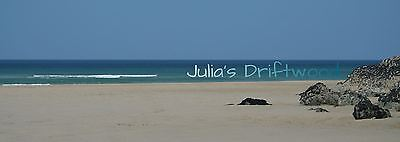 Julia's Driftwood furniture