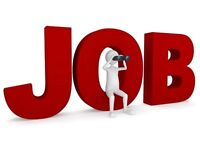 Temp/Full-Time Position Wanted - Available Immediately.....!