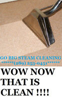 $79.99 3 ROOMS STEAM CLEANED  GO BIG STEAM CLEANING