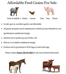 Affordable livestock feed
