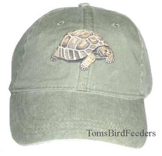 Tortoise Embroidered Cotton Cap NEW