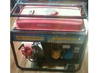 Petrol Generator 110 240