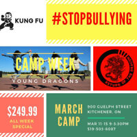 March Break Camps for Kids Kung Fu Stop Bullying