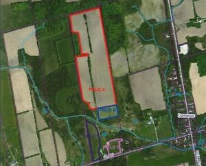 Farm Land For Sale 69 Workable