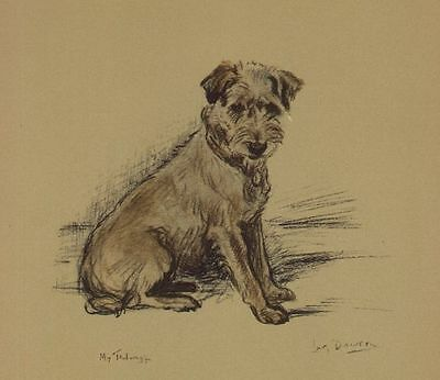 (Jack Russell / Border Terrier - Lucy Dawson Dog Print)
