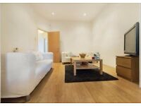 Amazing One Bedroom Apartment In Brixton only £300