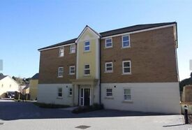 2 bedroom flat to rent at the Willows (no agent fees)