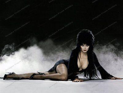 8x10 Print Cassandra Peterson Elvira #CAP