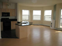 Bright & Beautiful 1300sq Whyte Avenue Condo - Roommate Rent Edm