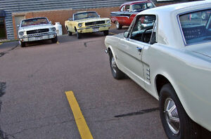 Wanted Vintage Mustang OWNERS