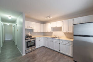 Newly Renovated 2 bedroom Apt Unit, W/D in Unit, Available Now