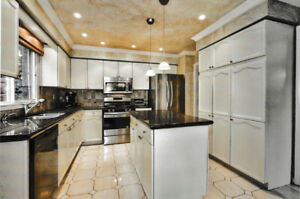 Whole Kitchen with Granite Countertops