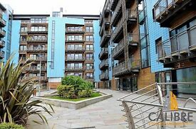 Luxury two bedroom flat - Breadalbane Street, Leith - £950pcm
