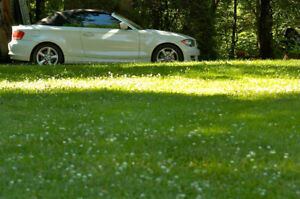 2011 BMW 1-Series 128i Cabriolet - IMPECCABLE!