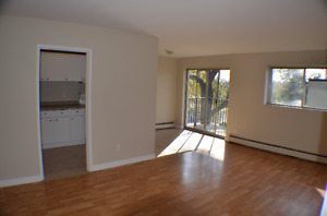 Must See 2BD Apartment- Utilities Included!