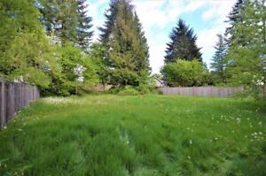 Big, flat lot 66 x 155 ft. Great location to build your dream ho