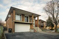 Spacious master BR for a student close to humber north campus