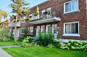 Appartement  6 1/2 sur 2 étages à louer - Verdun