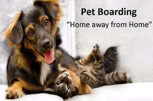 "Pet Boarding ""Home away from Home"""