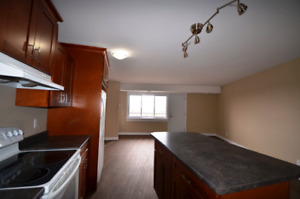 Renovated 2-Bed with Balcony Avail May -315 Glendale
