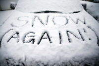 Reliable Snow clearing/shoveling available