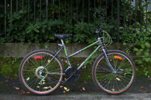 "Ladies' 18"" Mountain Bike"