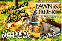 Lawn And Order - Remove Leaves From Your Property -$10per Bag
