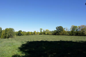 Beautiful 34.86 Acre Property On The Clare River Just Outside Of