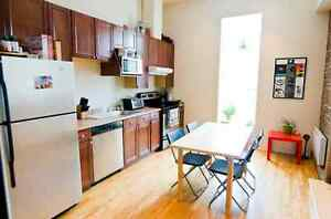 BRIGHT 2 room apartment at the Plateau