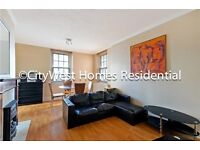 CHEAP AND BRIGHT THREE BED APARMENT IN PIMLICO WESTMINSTER - 10 MIN FROM BIG BEN - £410PW - WOODEN