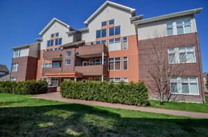 Beautiful 1230 Square feet condo. One visit will charm you!